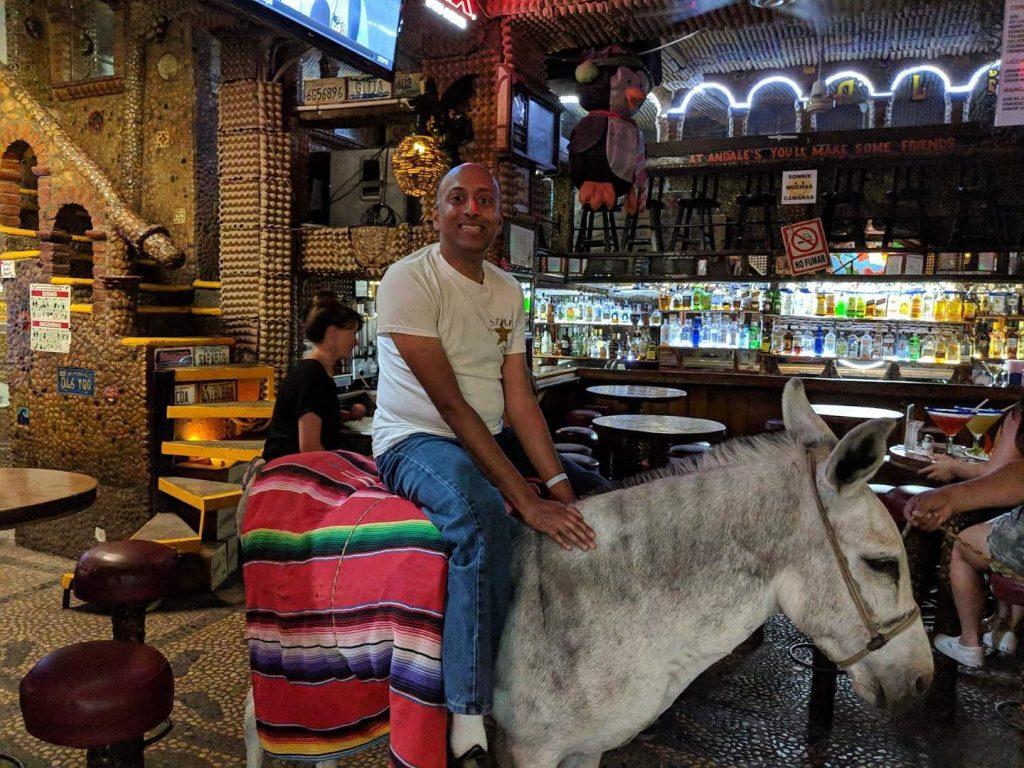 Donkey at Andales